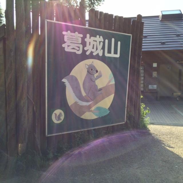 葛城山ツツジ狩り(まずは登るまで)