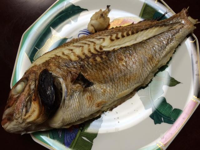 初めて魚をさばくの巻